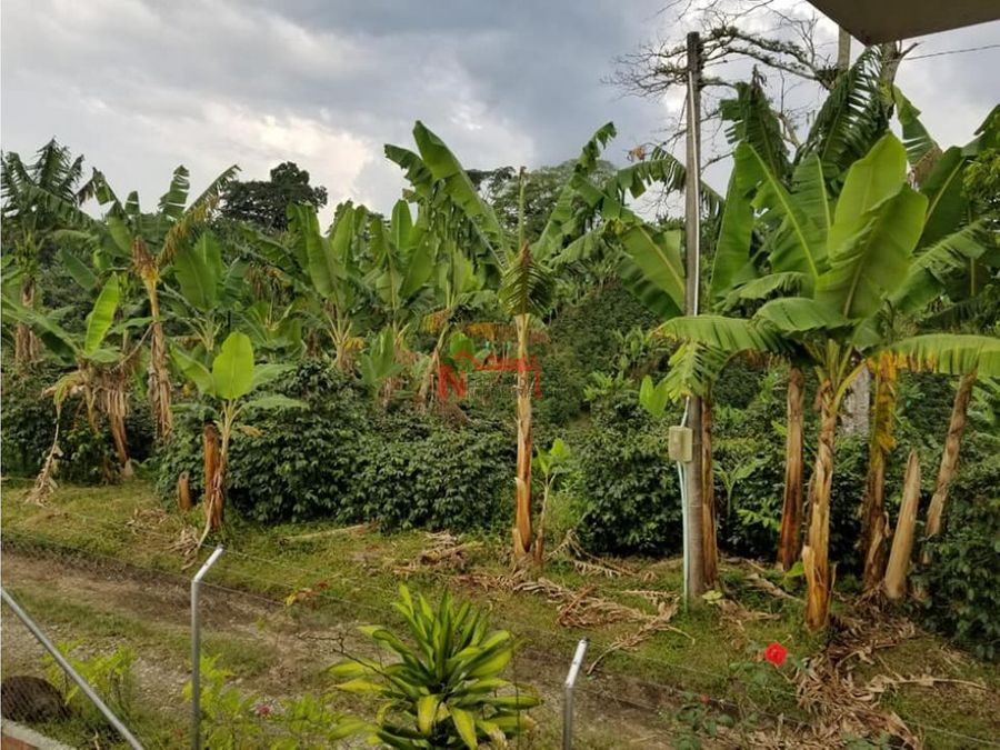 venta finca en quimbaya 1 hectareas