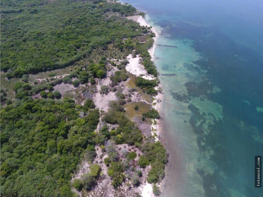 lote en cartagena isla baru