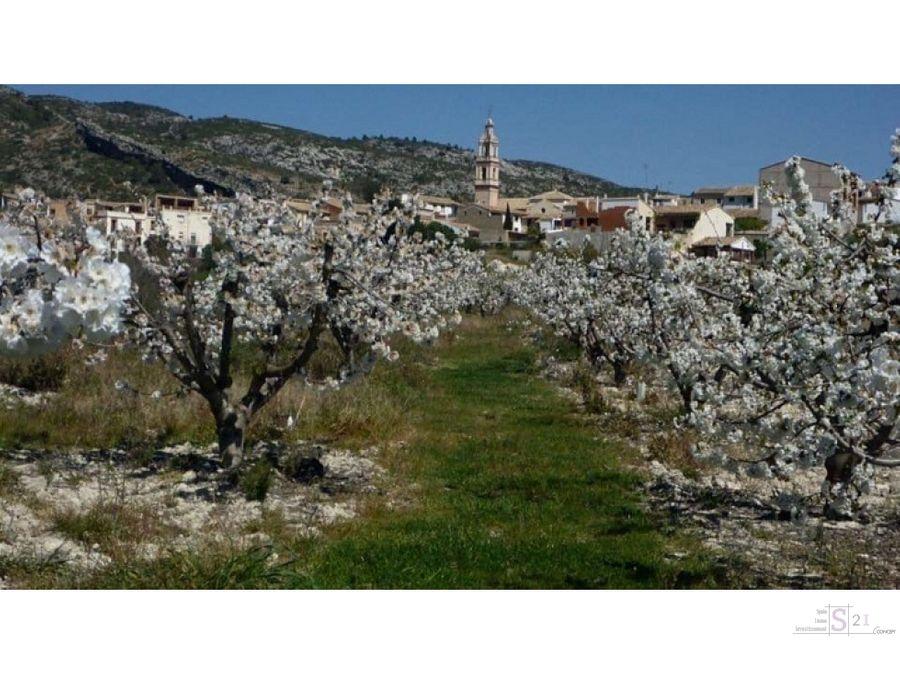 casa para reconstruir vall de la gallinera alpatro