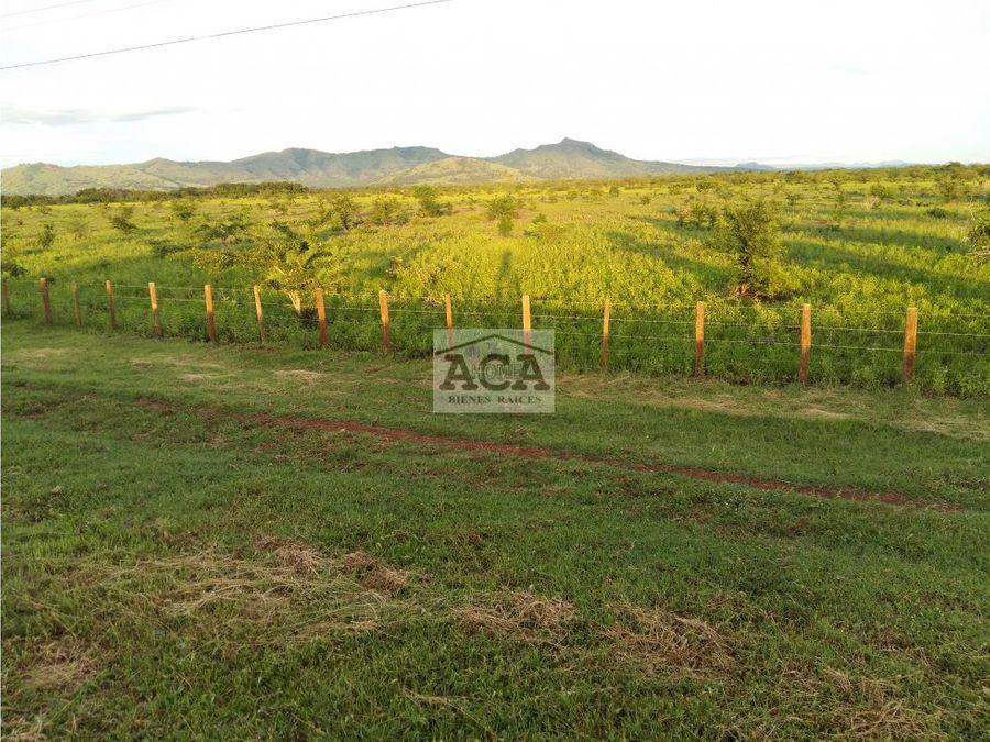venta de finca de 250 manzanas ubicada en managua