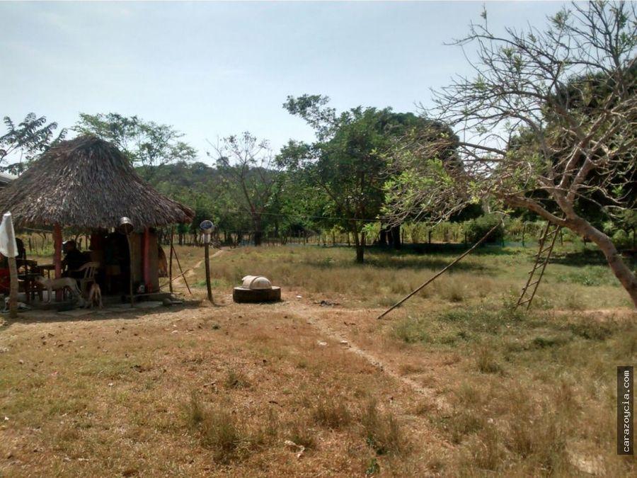 carazo vende finca en zipacoa bolivar