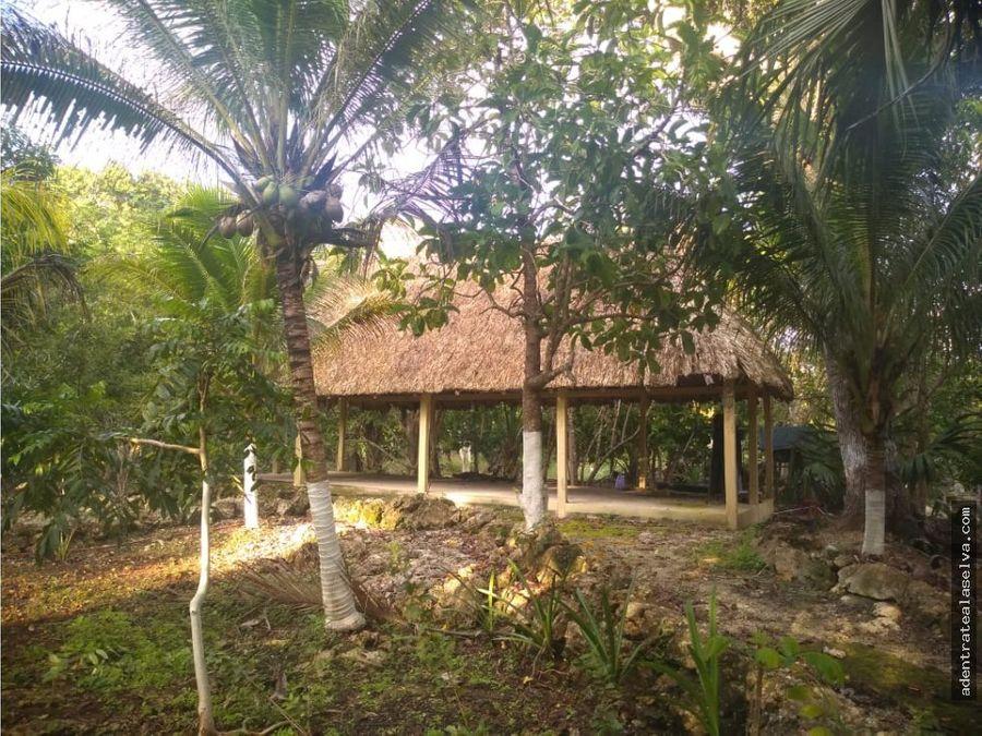 venta 40 hectareas con cenote ruta de los cenotes