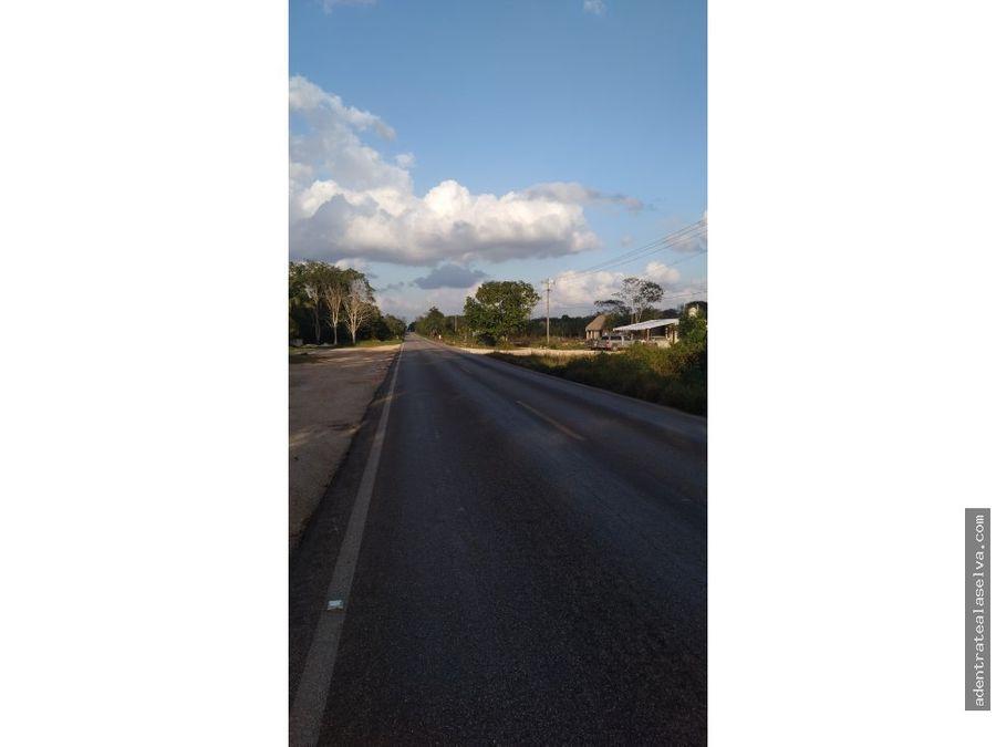 venta 5 hectareas pie de carretera leonavicario