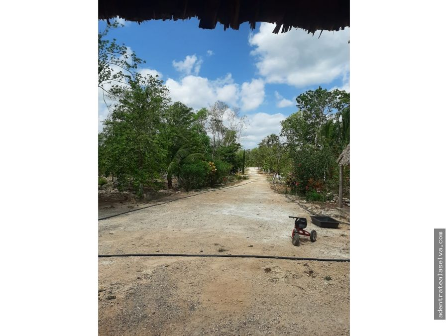 rancho 20 hectareas frente camino pavimentado