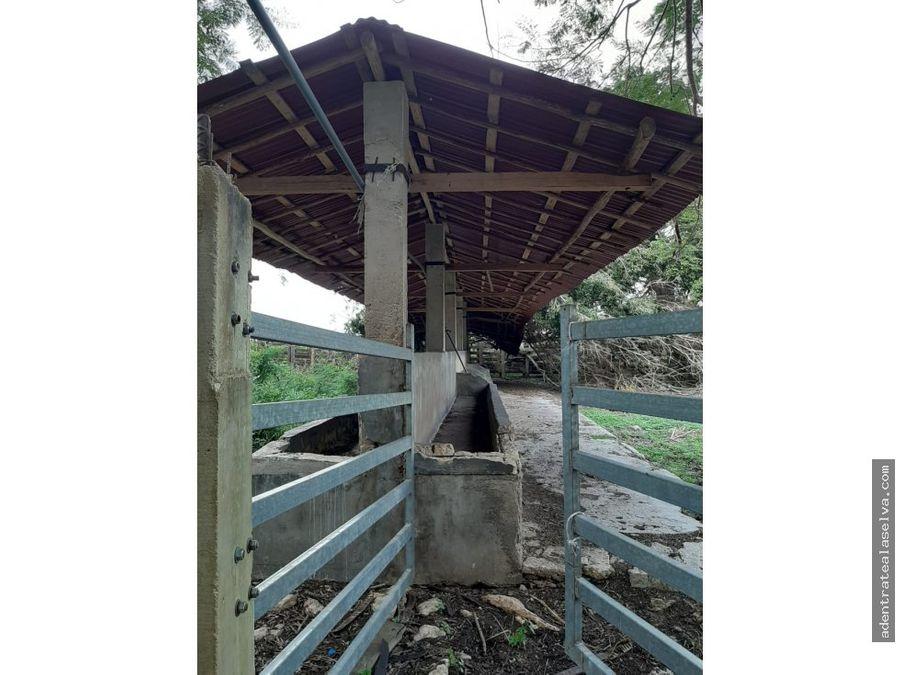 rancho ganadero 540 hectareas mecanizable