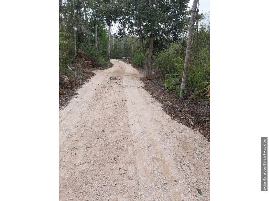 venta 1 hectarea selva alta leona vicario