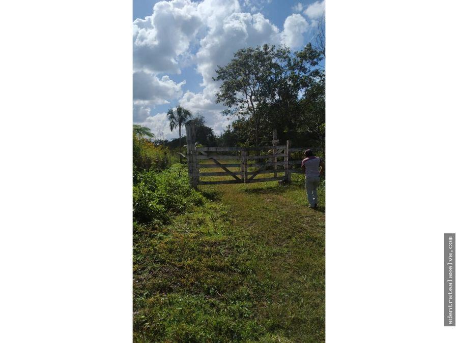 remate rancho 56 hectareas frente autopista
