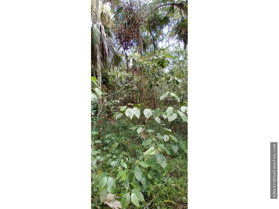 terreno 1 hectarea ruta de los cenotes