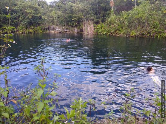 venta terreno 80 h con cenote abierto