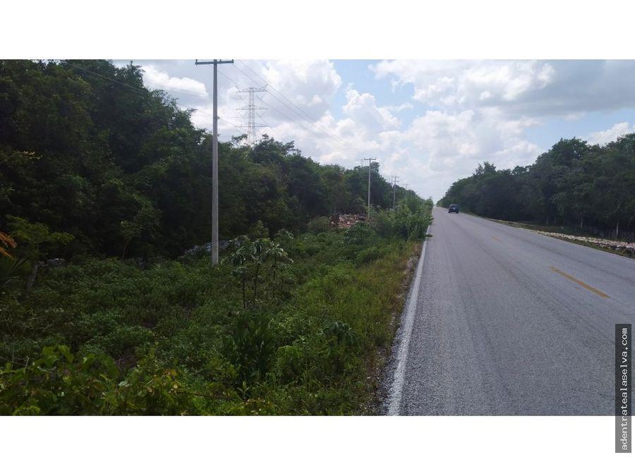 8 hectareas frente carretera