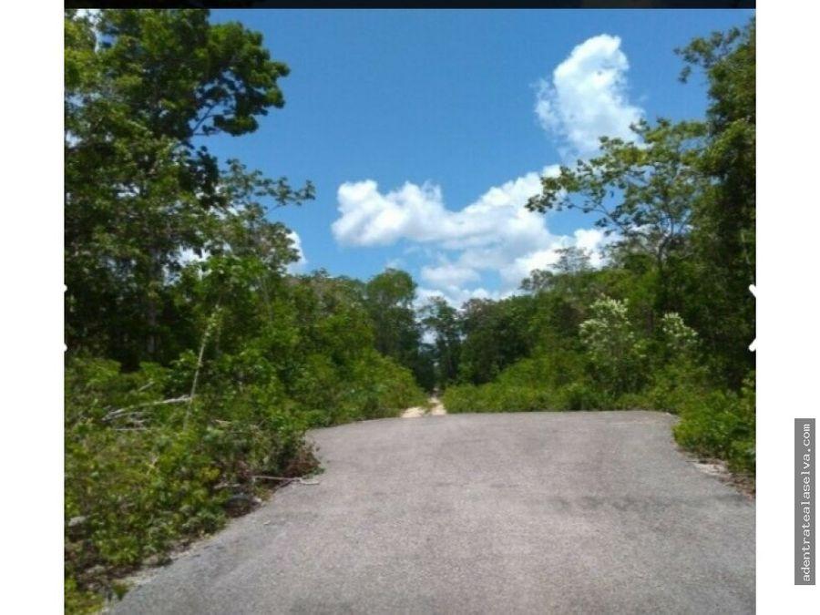 venta 3 hectareas frente carretera palapa y pozo