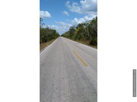 3 hectareas pie de carretera ruta de los cenotes