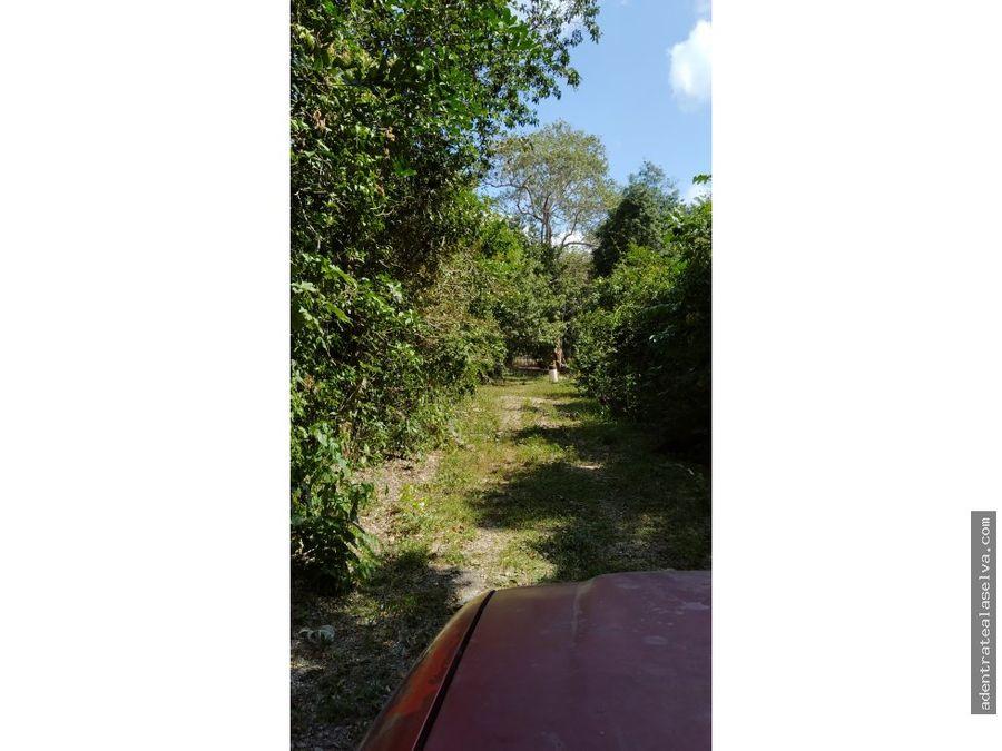 venta lote 2000 m ruta de los cenotes