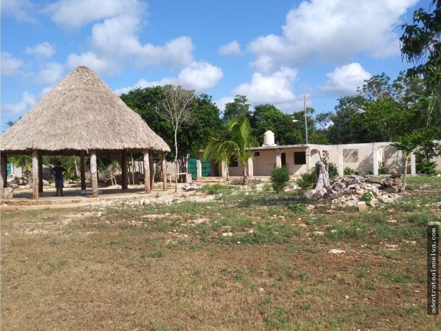 venta rancho 4 hectareas con cenote leona vicario