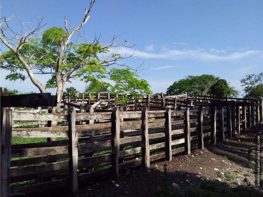 rancho ganadero 180 h calotmul