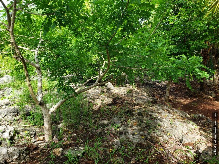 rancho 1 hectarea leona vicario