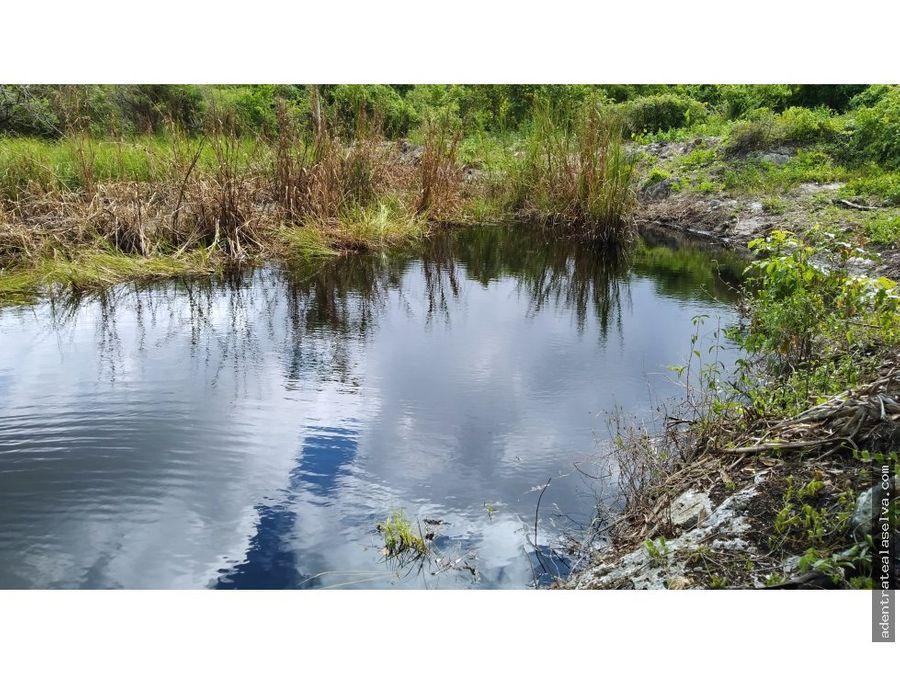 cenote en venta con 3 hectareas cerca leona vicario