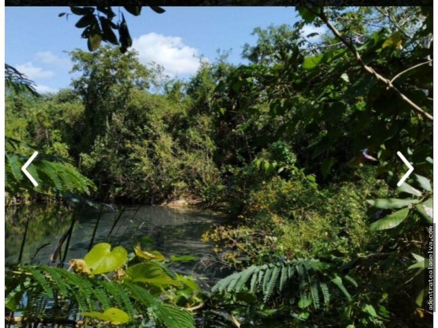 venta lotes km 36 ruta de los cenotes