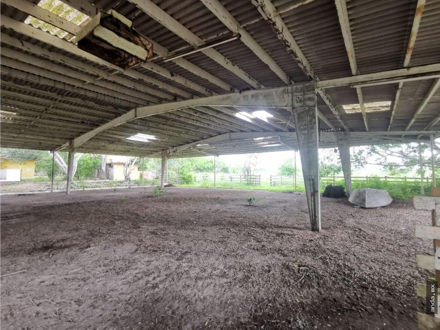 rancho en venta a pocos minutos de panuco ver