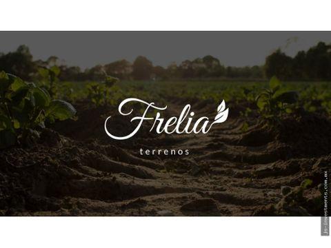 frelia