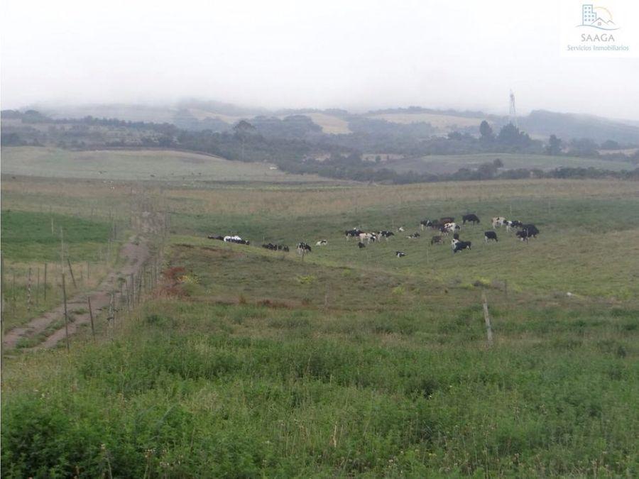 se vende hacienda ganadera y agricola en cotopaxi