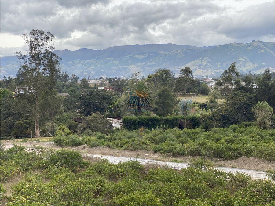 exclusivos lotes urbanizados en puembo