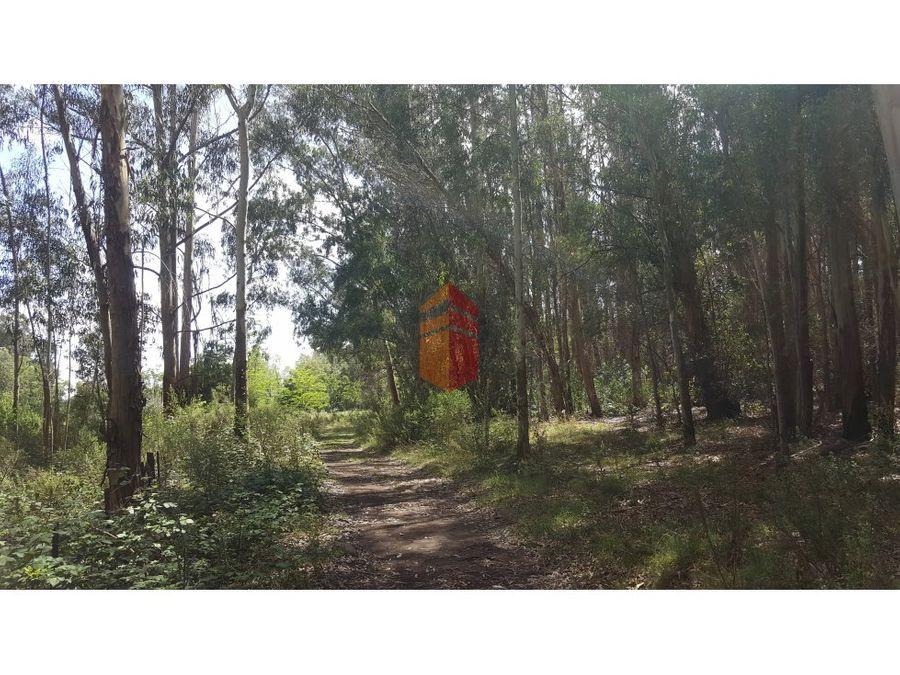 12 hectareas en barrio uncas en venta o permuta