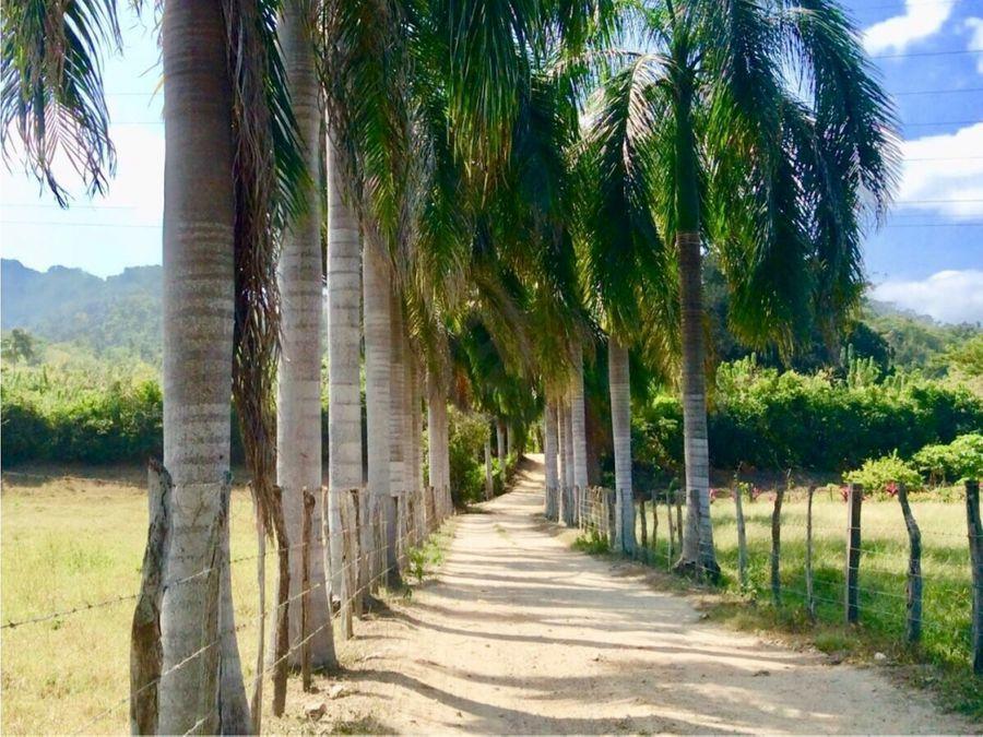 se vende finca 20 ha con playa en guachaca santa marta colombia