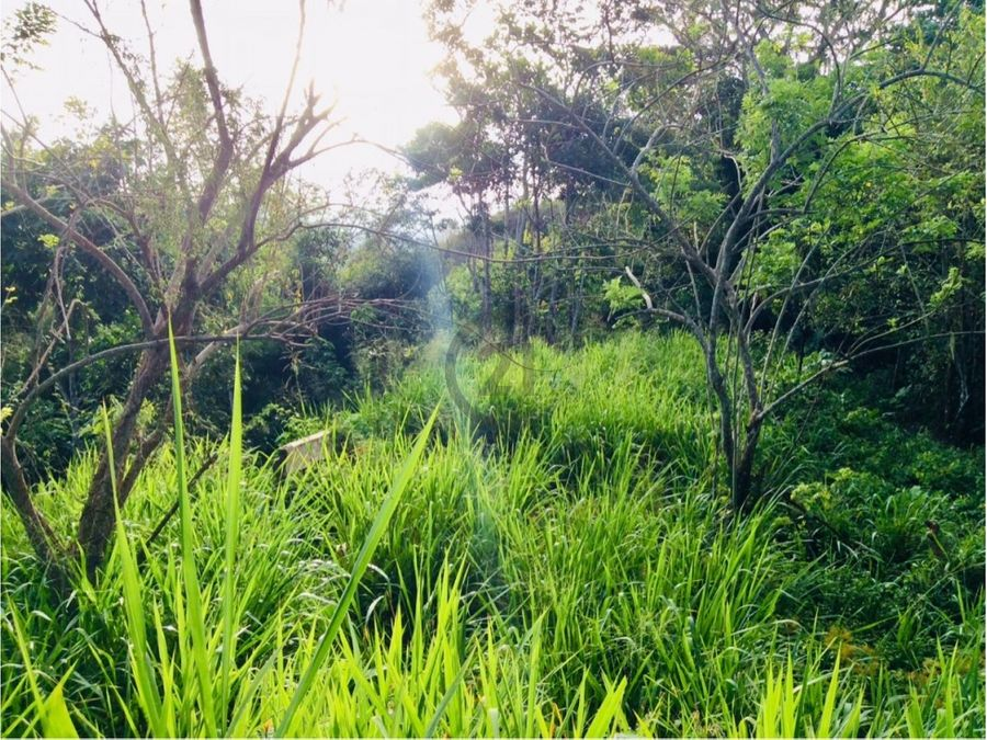 se vende finca con rio 32 ha bonda santa marta colombia