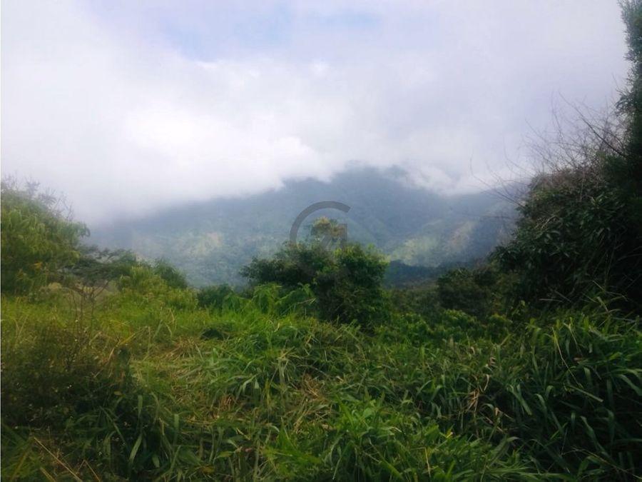 se vende finca cafetera 22 hectareas bonda santa marta colombia