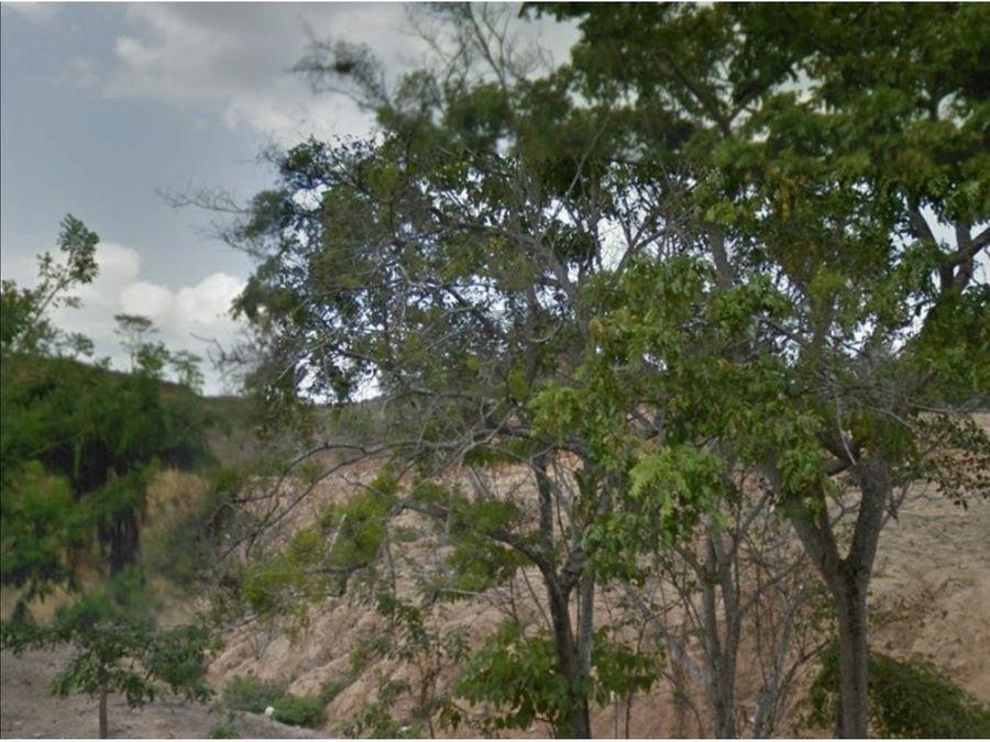 se vende finca de 43 ha con rio en mingueo guajira