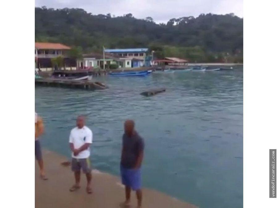hotel barracuda acandi choco