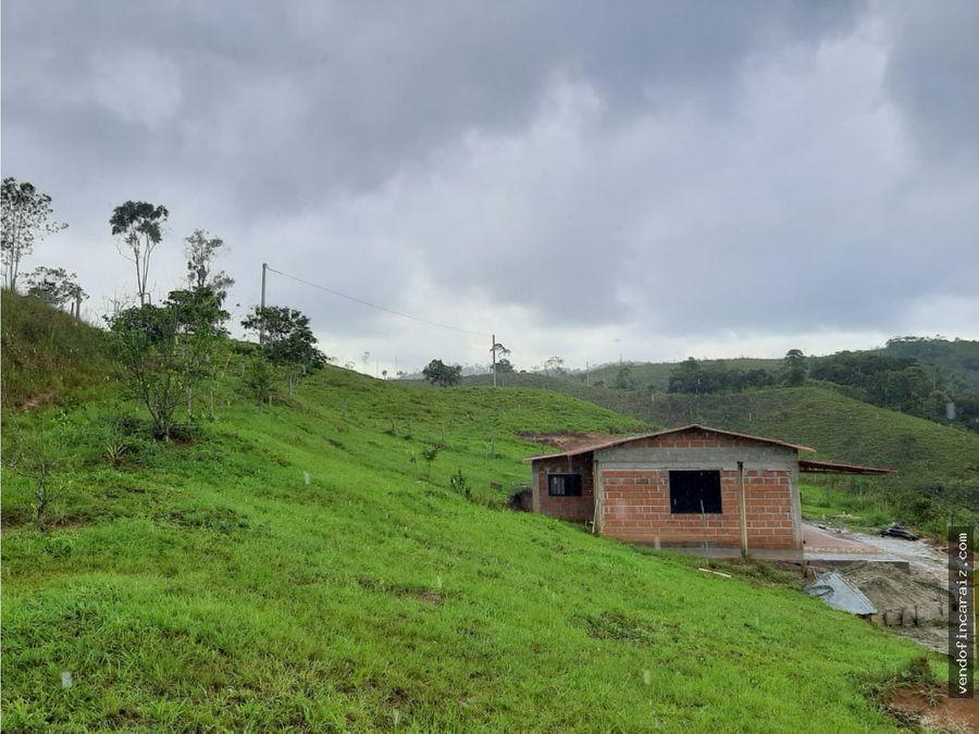 finca en san carlos 10 hectareas