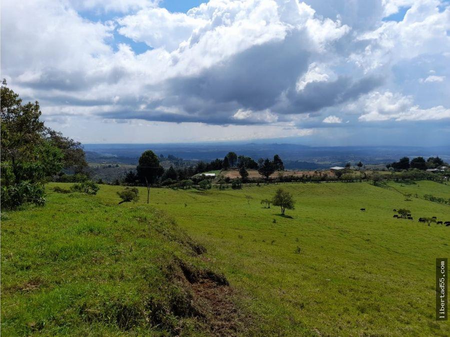 vendo finca 20 hectareas en cajibio cauca popayan