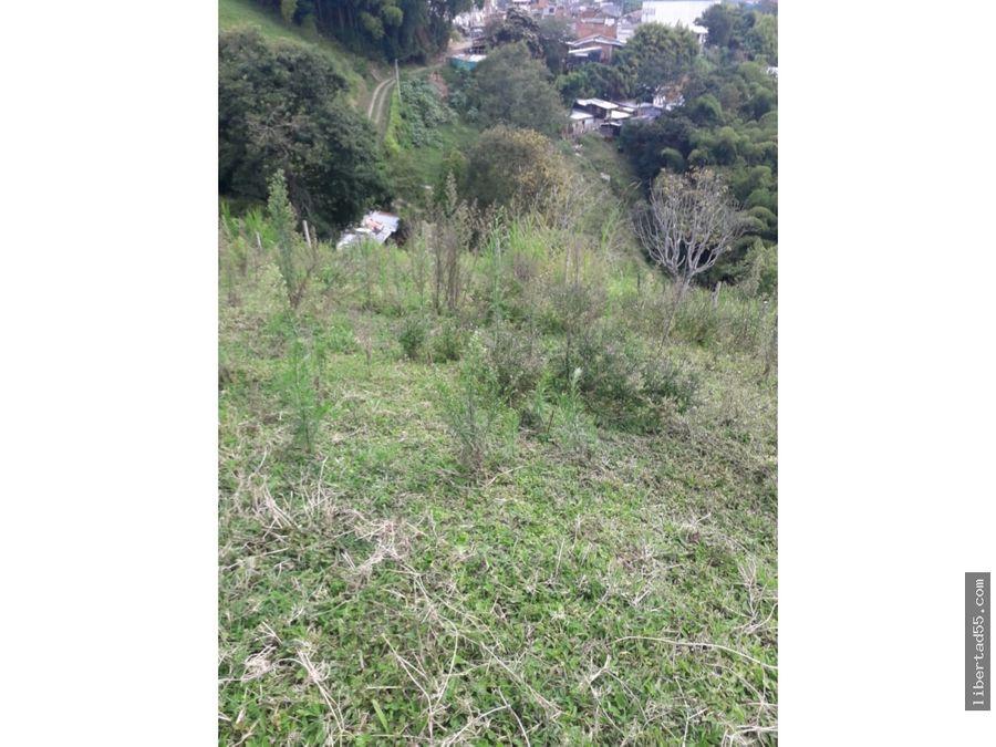 vendo lote terreno 5 hectareas zona urbano montenegro quindio colombia
