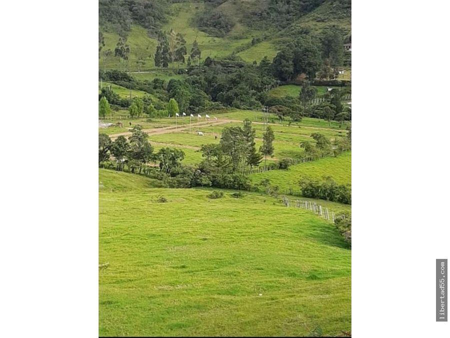 vendo parcelas en los alpes suizos silvia cauca popayan colombia