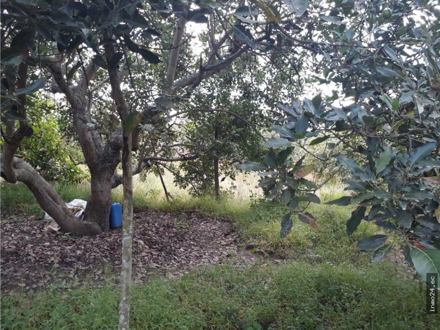 venta de terreno en arrayanes puembo