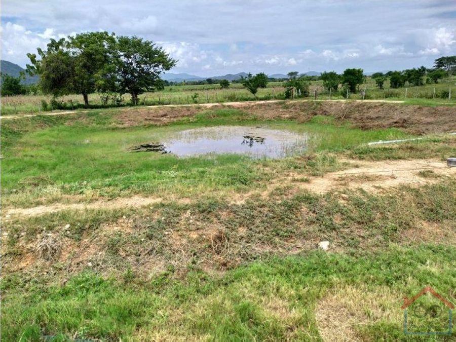 en venta extensa granja en manzanita estado lara