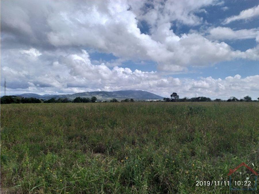 en venta terreno de 6 hectareas en totumillo