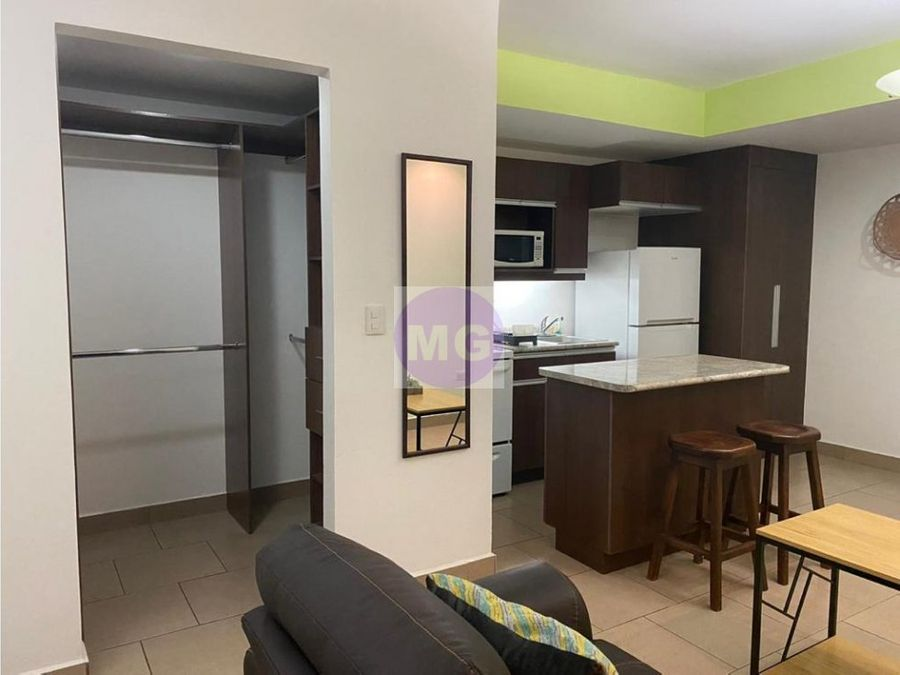 green tower apartamento amueblado