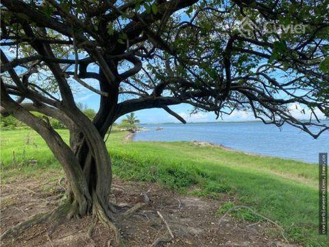 terreno en la brecha huasteca con frente a laguna de tamiahua