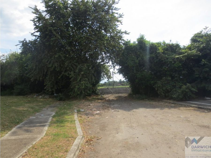 alquilo lote en la italia palmira 20000 m2