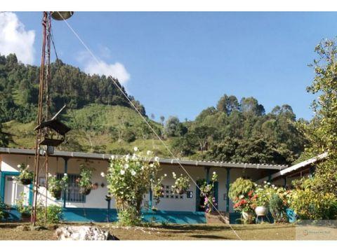 venta de finca campesina de 6400 m2 jardin antioquia