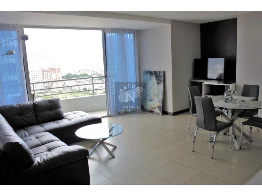 alquiler apartamento amoblado torre paseo colon