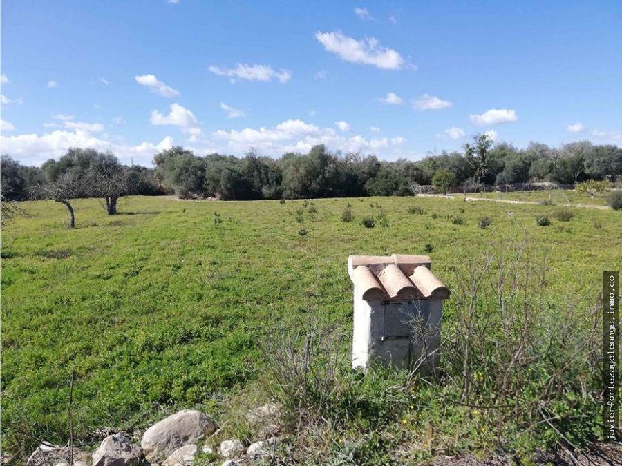 terreno llano con agua de contador