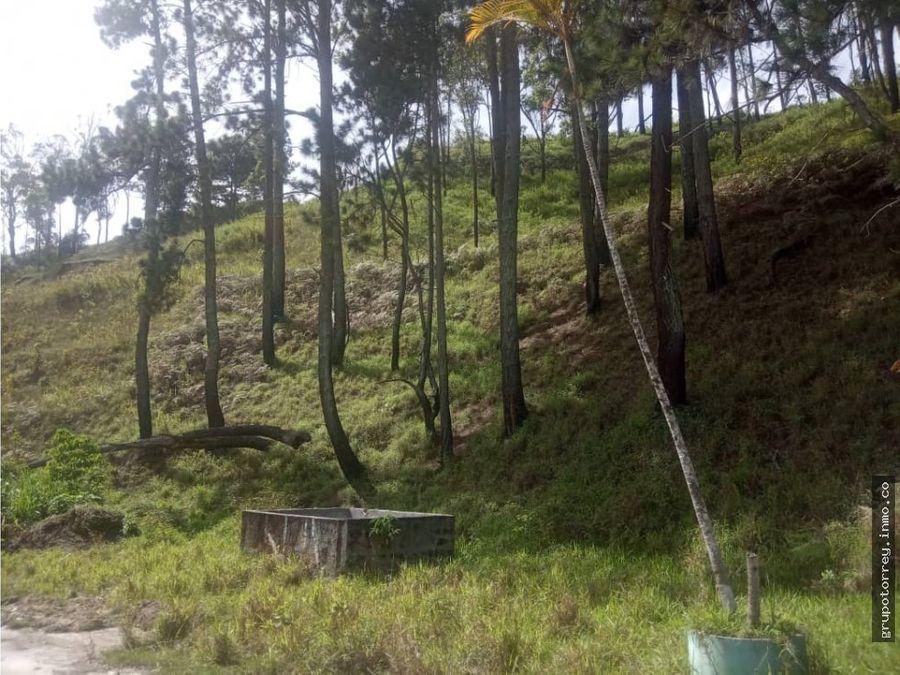 terreno sector los desamparados el limon san antonio de los altos