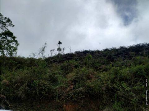 terreno 3500m2 parcelamiento el prado san diego de los altos