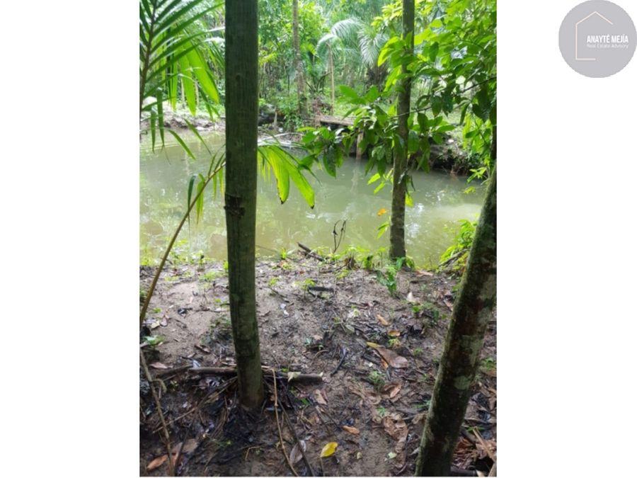 terreno en venta en rio dulce izabal
