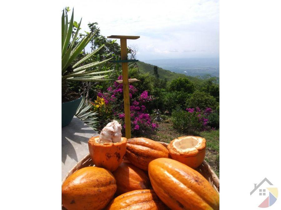 se vende hacienda san juan en ansermanuevo