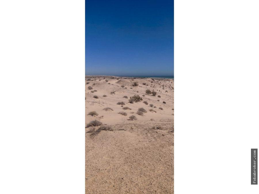 terreno a orilla de playa y carretera el golfo puerto penasco